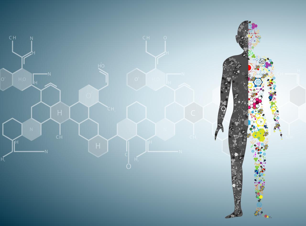 Naturopathie, une approche globale de la santé